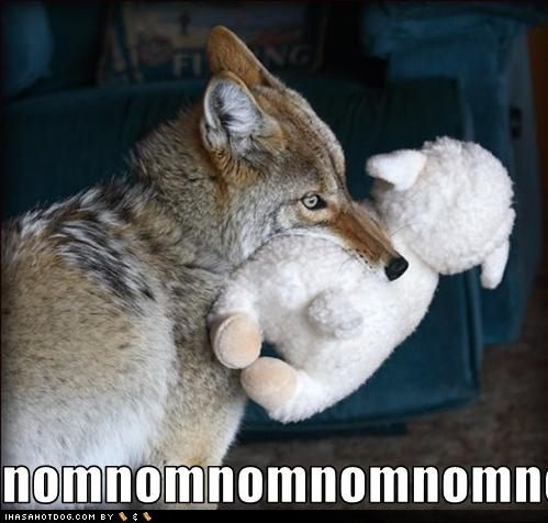 [Image: funny-dog-pictures-dog-eats-little-lamb.jpg]