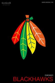 Hawks logo minimal